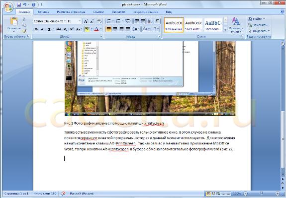 Рис.2 Фотография экрана с помощью клавиш Alt+PrintScreen