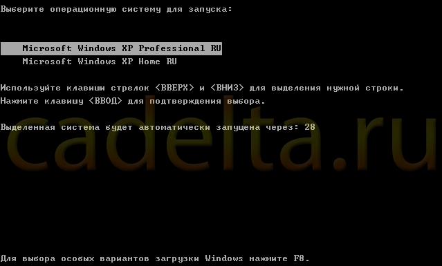 Рис.1 Пример выбора версии Windows